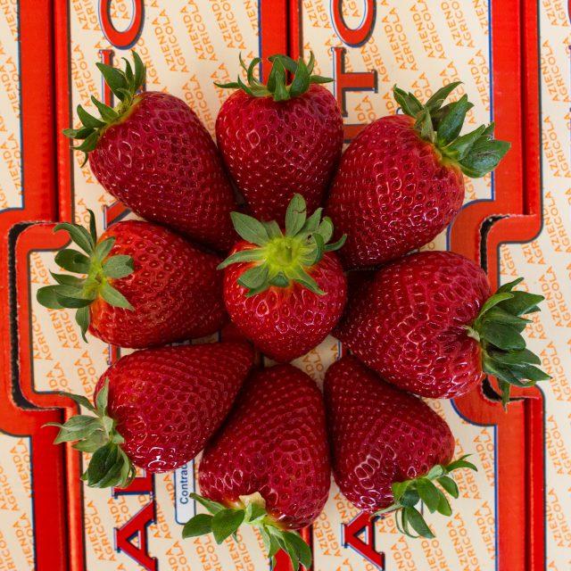 composizione di fragole